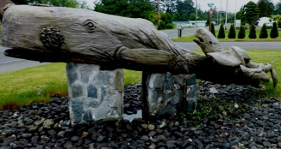 Driftwood Whales