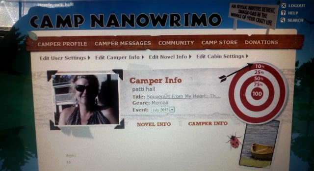 My Virtual Camp NaNoWriMo
