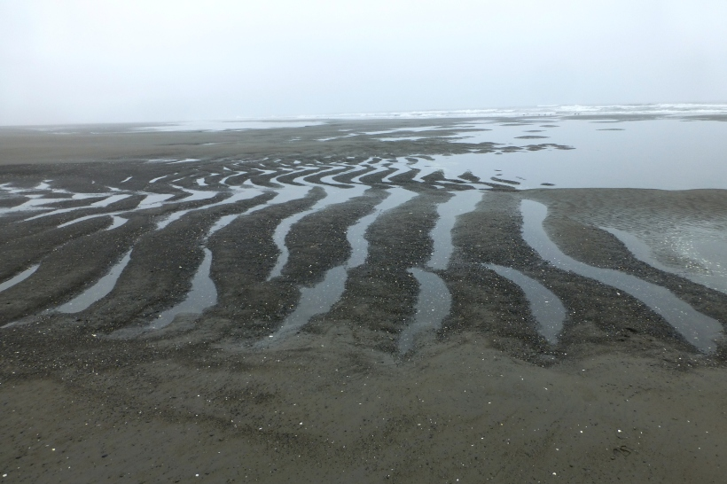 Sculpted Sands at low tide PHALL PHOTO 2013