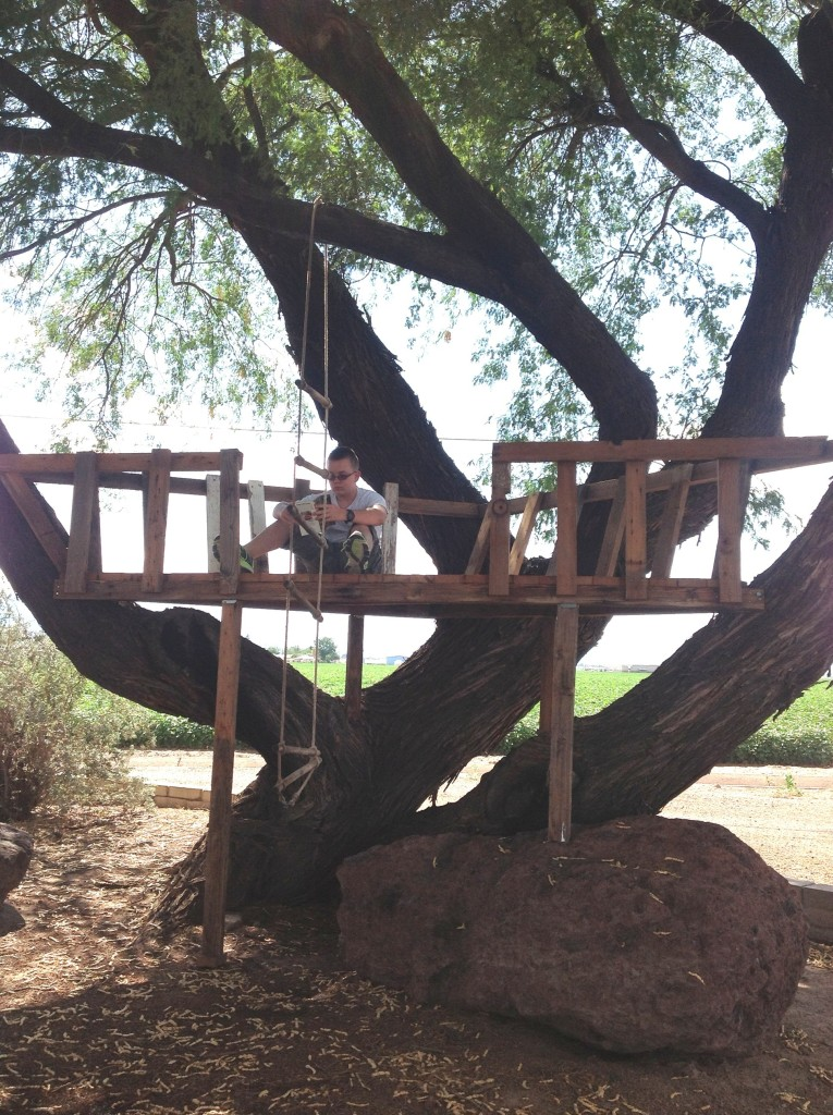 Nephew Graeson reading in a tree house he helped his dad build. GHALL PHOTO 2013