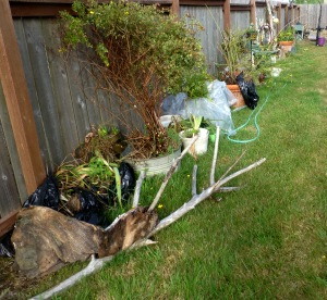 The fence is lined with garden plants and treasures, waiting to be placed in the secret garden. PHALL PHOTO 2013