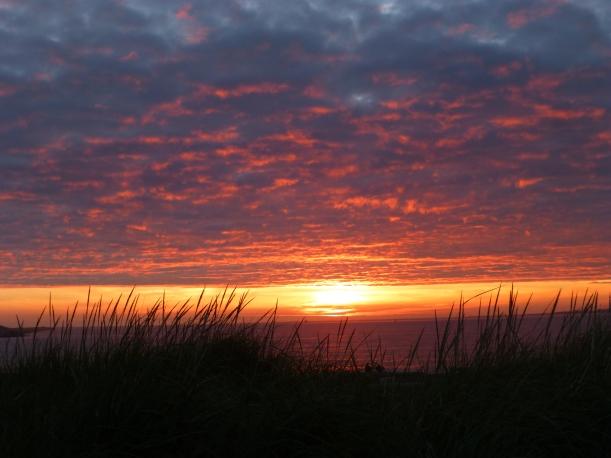 Half-Moon Bay Sunset Through The Dunes PHALL PHOTO 2013