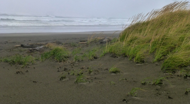 Stormy day on beach. Not a great place to read:>) SONJON PHOTO 2013