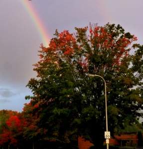 Fall Rainbows. Oct 2nd, Centralia, WA PHALL PHOTOS 2013