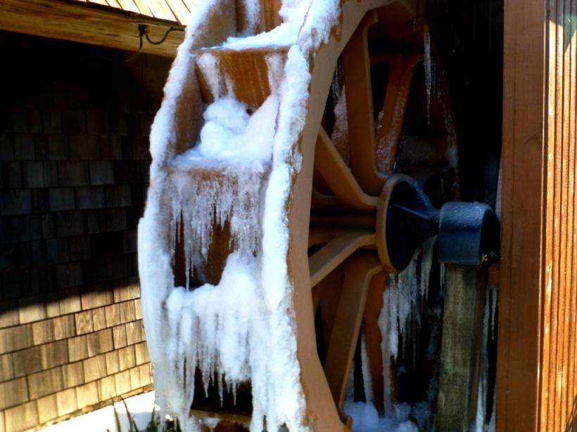 I mean REALLY frozen! PHALL PHOTO 2013
