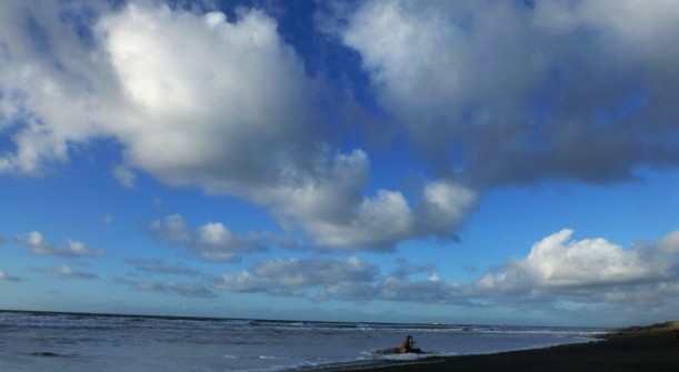beautiful blue sky and cottony clouds 2 days ago. Westport, WA PHALL PHOTO 2013