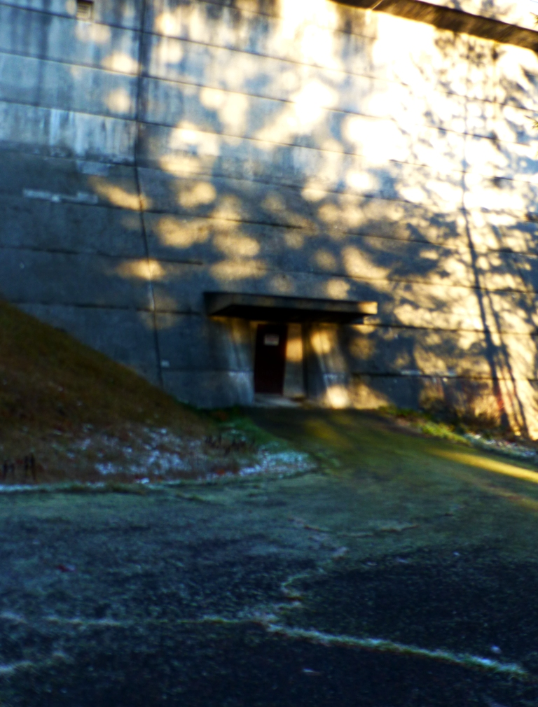 Tree shadows on dam. PHALL PHOTO 2013