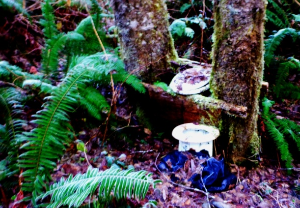 Primitive wilderness double-seater. We held out for civilization:>) PHALL PHOTO 2013