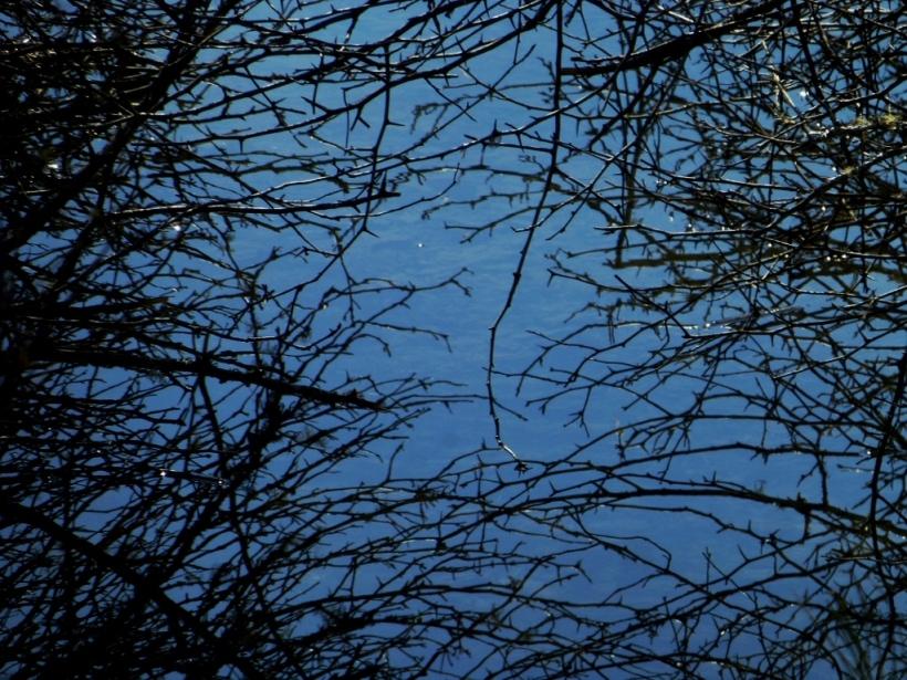 Water not sky.  Packwood, WA.  PHALL PHOTO 2014