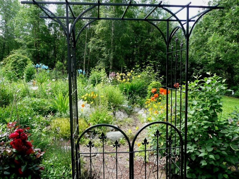 Welcome to our blog tour! Garden gate to my mom's garden. Eagle River, Alaska 2012