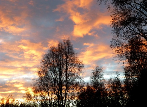 Sunset last night, from my parent's deck, Eagle River, Alaska.  Phall Photos 2014